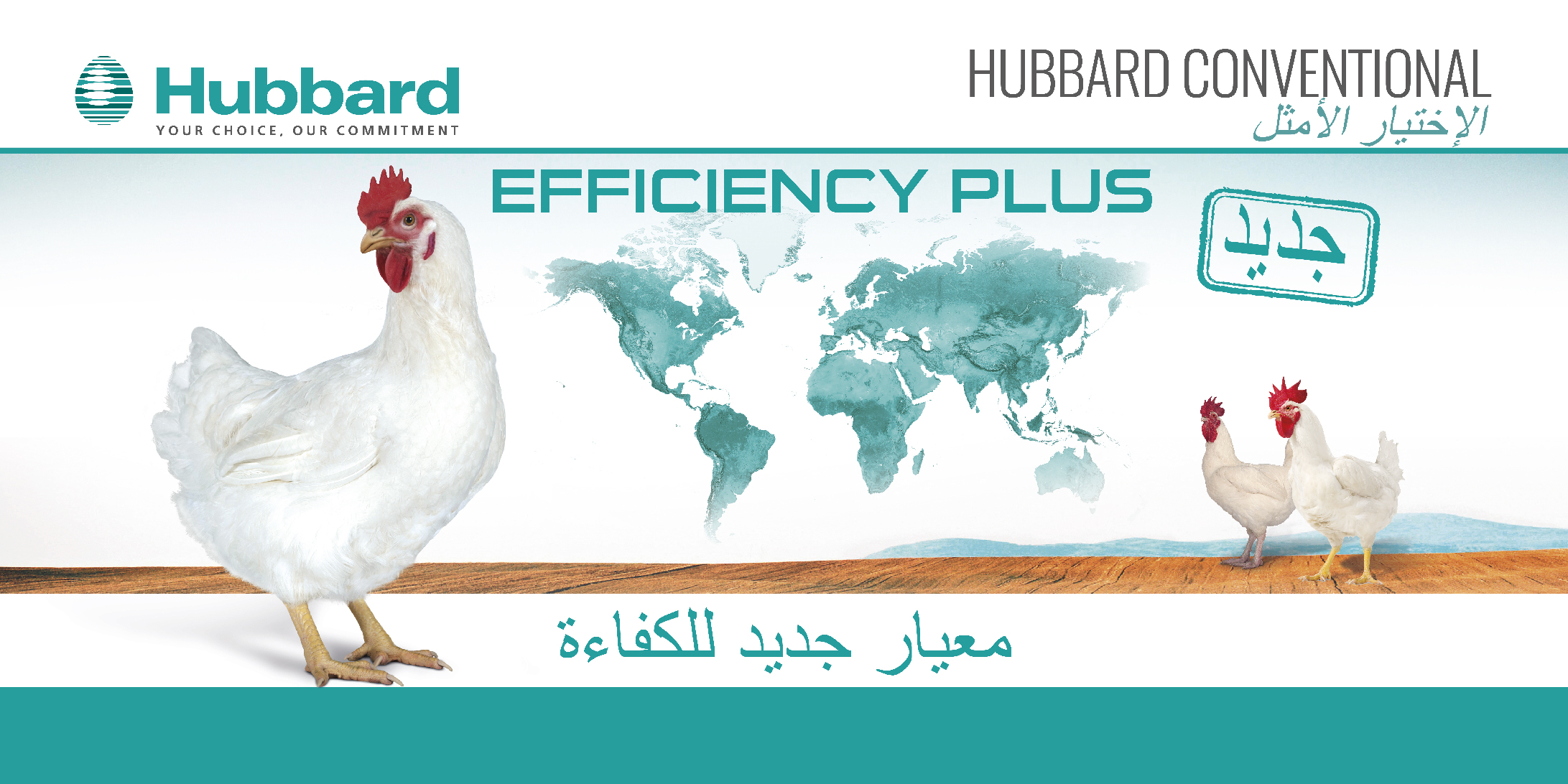 HUBBARD EFFICIENCY PLUS_AR