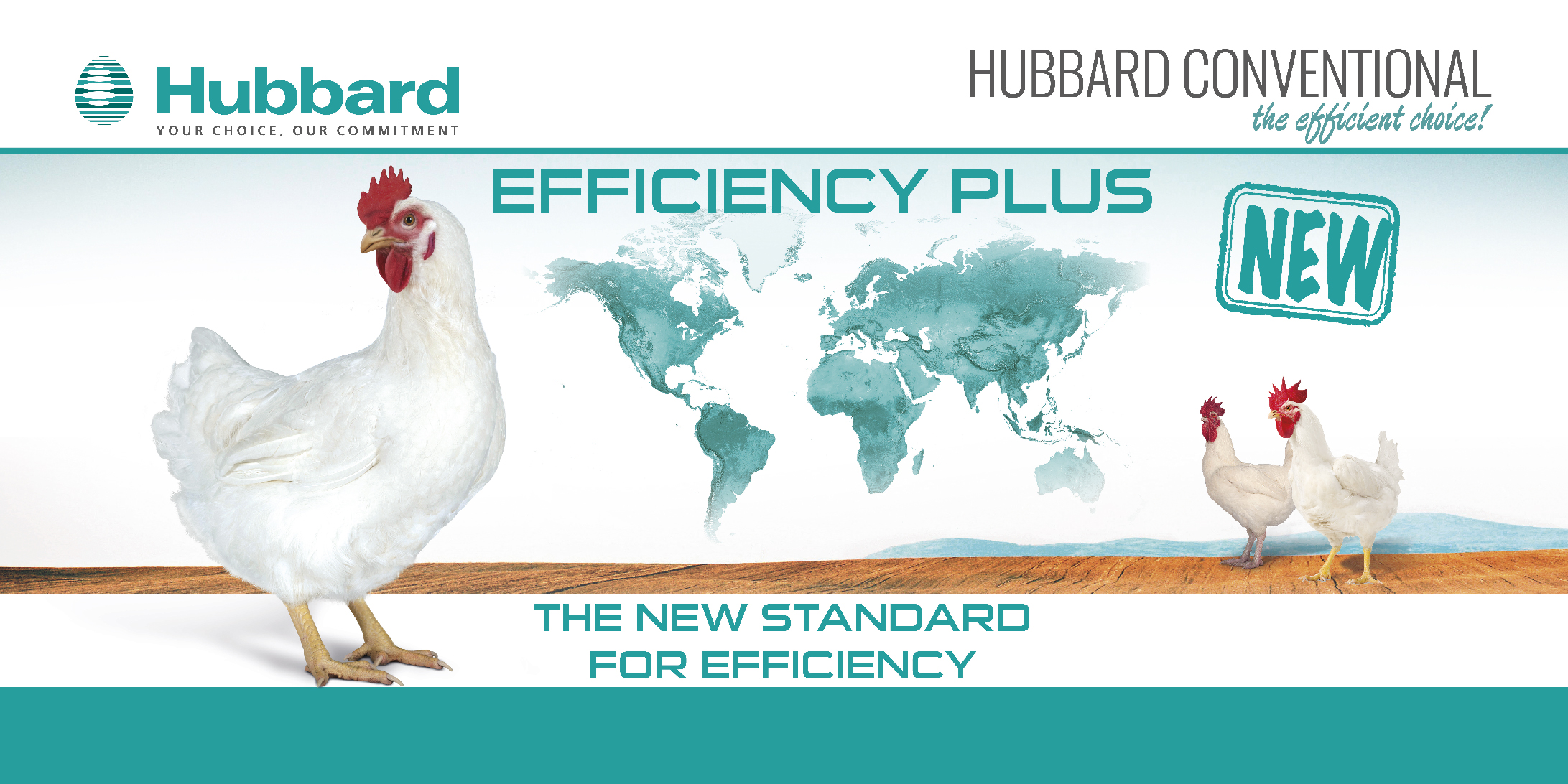 HUBBARD EFFICIENCY PLUS_EN