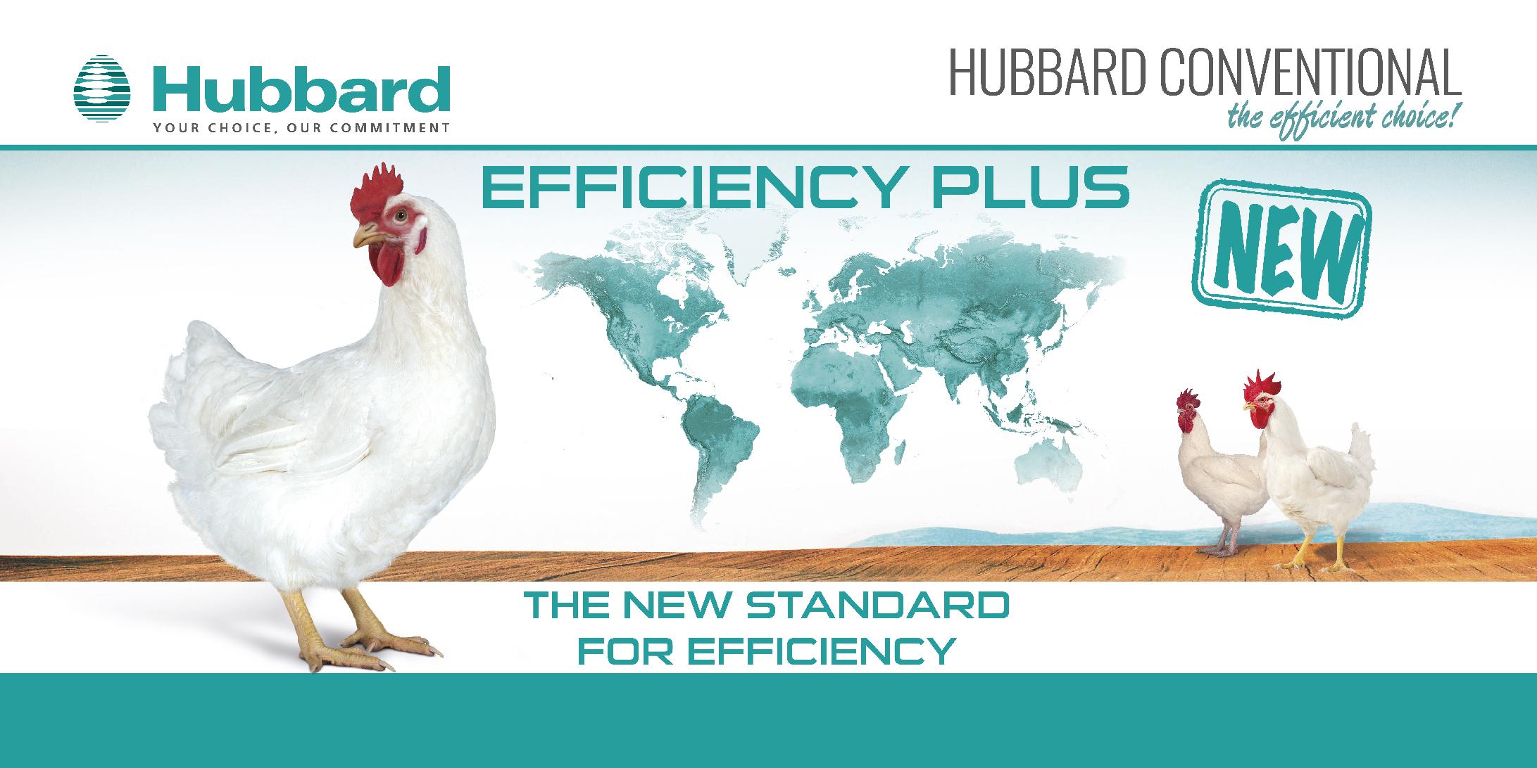 Hubbard - Homepage