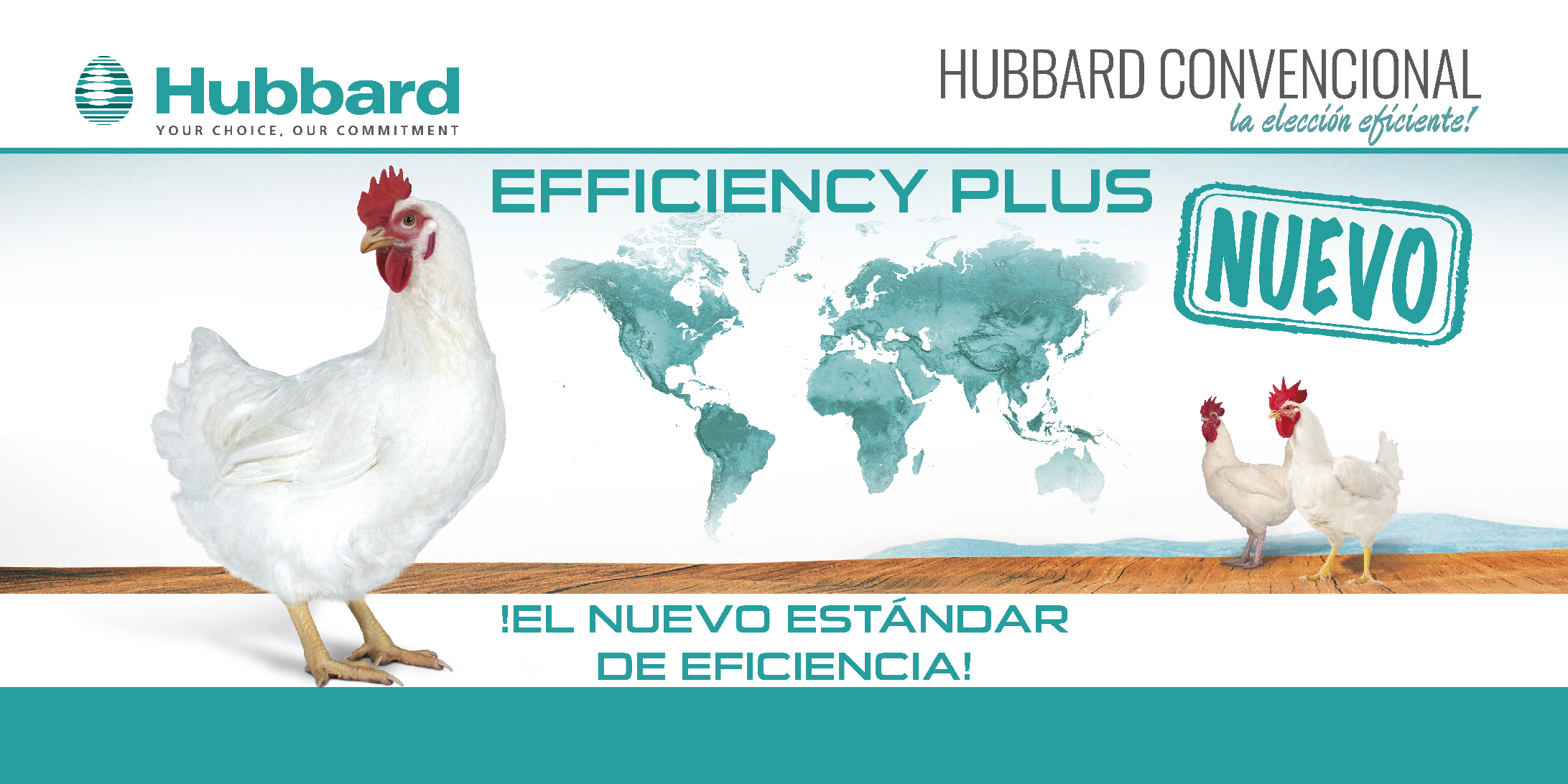 HUBBARD EFFICIENCY PLUS_ES