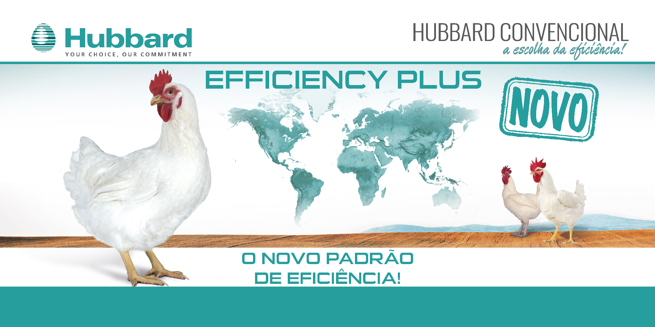 HUBBARD EFFICIENCY PLUS_PT