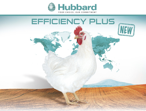 BlocActu_EN_Hubbard Efficiency Plus
