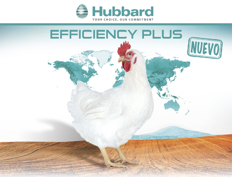 BlocActu_ES_Hubbard Efficiency Plus