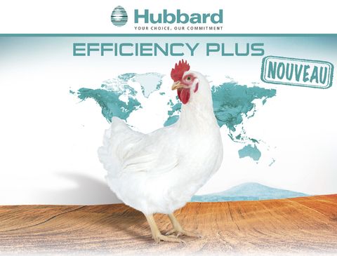 BlocActu_FR_Hubbard Efficiency Plus