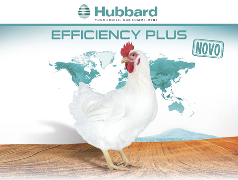 BlocActu_PT_Hubbard Efficiency Plus