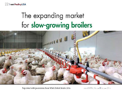 BlocActu-Theexpanding Market for slow-growing broilers_WattPoultryUSA